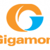 Gigamon / Visibility Fabric : analyse du trafic Big Data