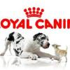 Royal Canin déploie un logiciel de planification et d'optimisation de tournée dans 15 centres de distribution
